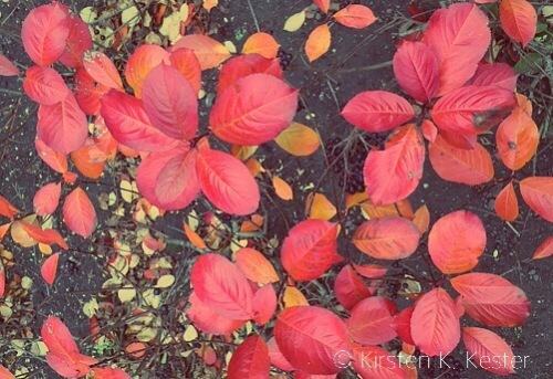 luft fotos © 2knald.com | Kirsten K. Kester